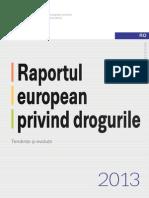Raport European 2013