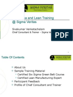 An Introduction to Six Sigma and Lean Training
