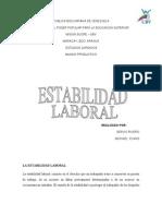 La Estabilidad Laboral Expo