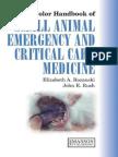 Handbook of Small Animal Emergency and Critical Care Medicine