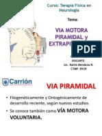 2 - Via Motora Piramidal y Extrapiramidal PDF