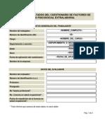 Formato Informe Individual Extralaboral