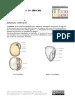 CLASE-03-Semilla-tipos-de-siembra-y-propagación