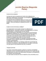Reproduccion equina II Parte.doc