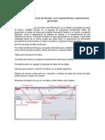 Acces y sus caracteristicas.docx