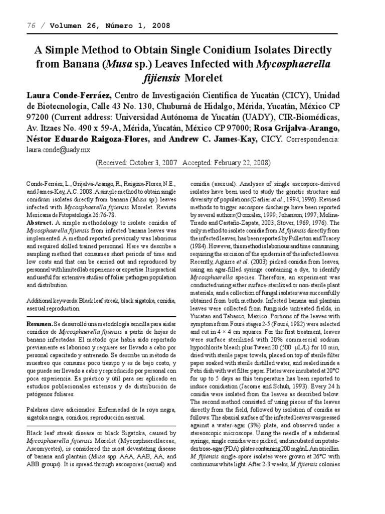 Fragmentation reproduccion asexual pdf viewer