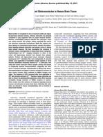 Cereb. Astrocyte Calcium Signal and Gliotransmission in Human Brain Tissue Cortex-2012-Navarrete-Cercor-bhs122