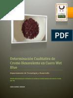 Determinación Cualitativa de Cromo Hexavalente en Cuero Wet Blue