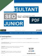 viallet-pierre-eric-consultant-seo-groupm