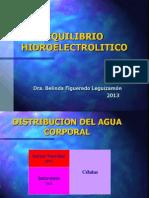 Agua y Electro-ciru 2013