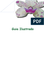 Guia Ilustrado Orquideas