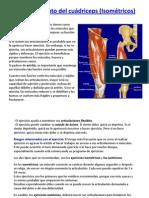 Fortalecimiento Del Cuc3a1driceps Isomc3a9tricos