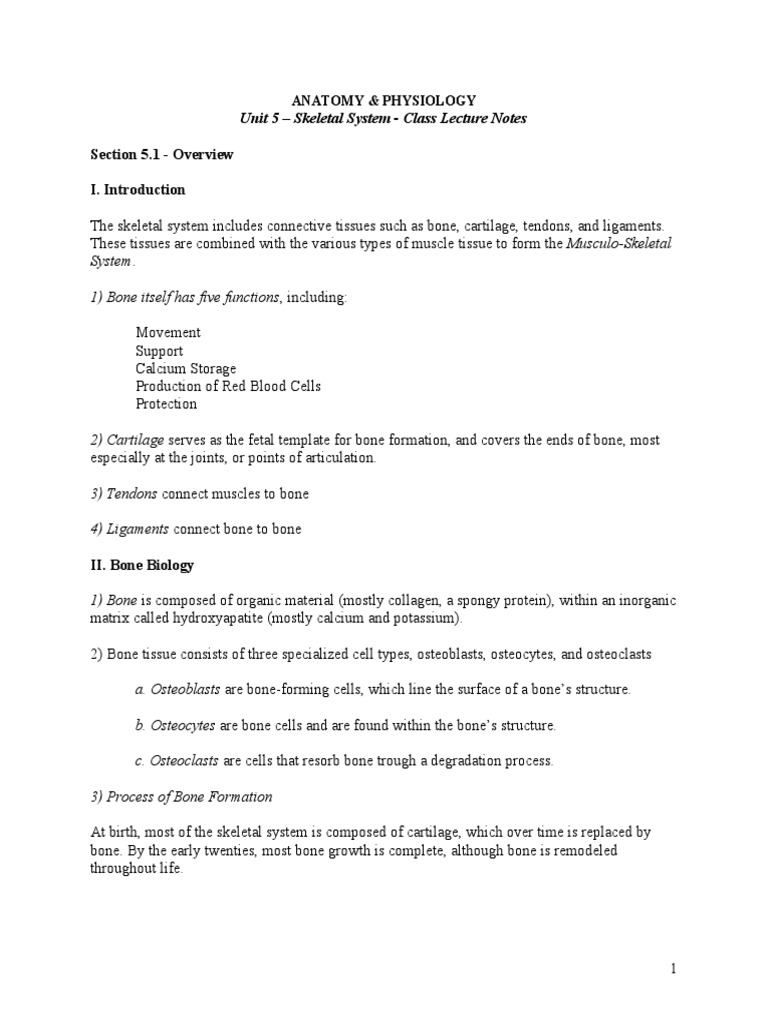 Anatomy Lecture Notes Unit 5-1 Skeletal System Overview   Bone ...