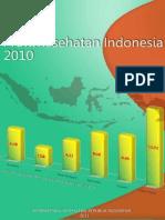 Profil Kesehatan Indonesia 2010
