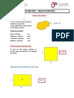 GEOMETRÍA_TRIGONOMETRÍA_06_ÁREAS.pdf