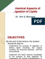 04 Digestion of Lipids_ 11.2012