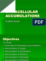 04-Intracellular Accumulations 2008