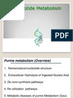 5-1 Necleotide Metabolism (Purine) (2)