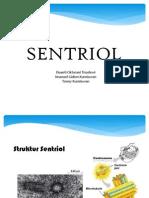 Slide Sentriol