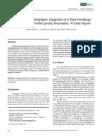 Doppler Echocardiographic Diagnosis of a Rare Pentalogy of Fallot Having Penta-Cardiac Anomalies