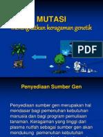 12. Mutasi