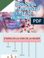 Fisiologia Del Aparato Genital Femenino (2)