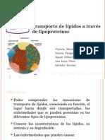 Transporte de lípidos a través de lipoproteínas