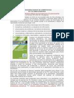 ESTÁNDARES UNESCO DE COMPETENCIAS TIC PARA DOCENTES