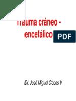 TRAUMA CRÁNEO ENCÉFALICO