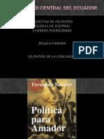 politicaparaamador-121028202903-phpapp01