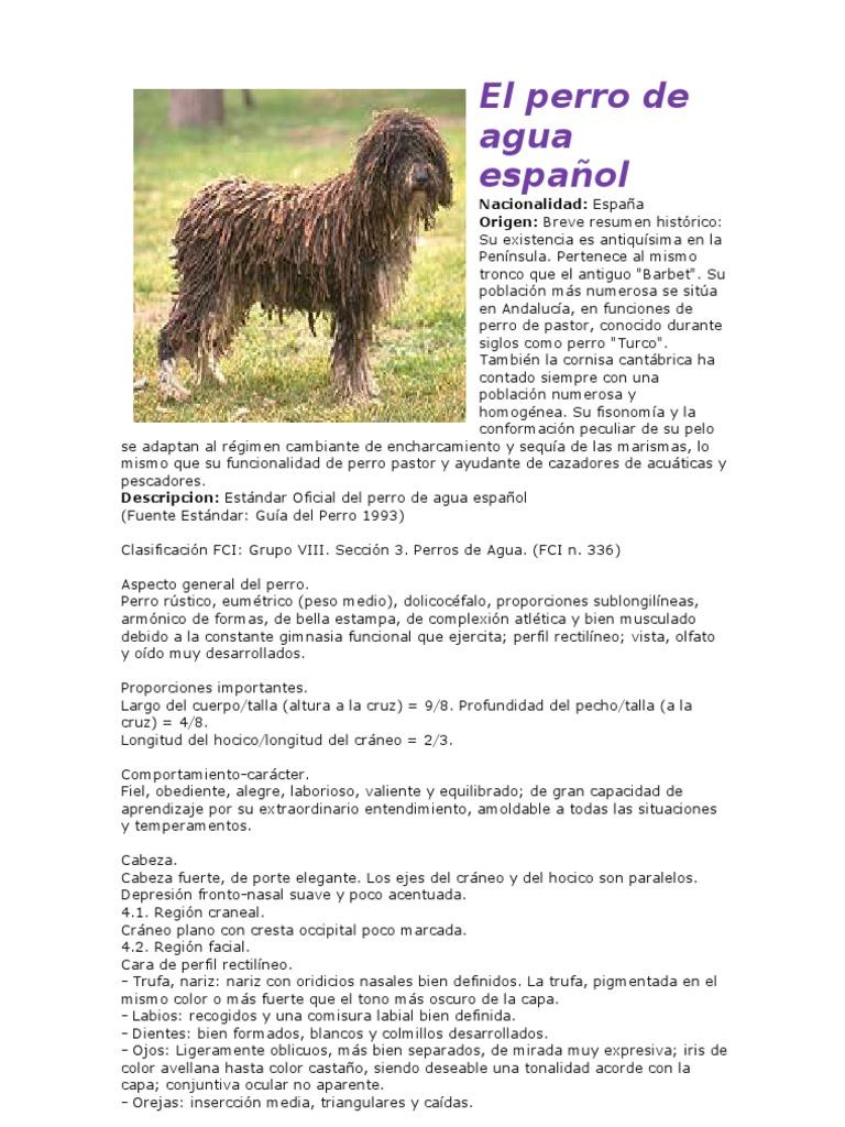 200 razas de perros