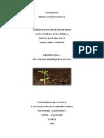 Taller sobre sustratos.pdf