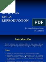 4. GENÉTICA  EN LA REPRODUCCION Dr.Rodriguez