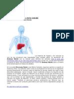 La limpieza hepática y de la vesícula