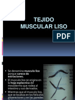 Tejido Muscular Lisoxx