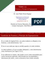 Tema 1.11-Condicion de Frontera y Principio de Superposicion