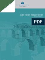 Euro Money Market Survey 201311 En