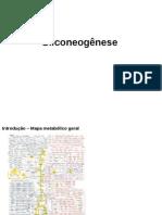 Gliconeogense&viaPFp2 (1)