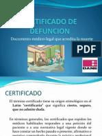 Certificado de Defuncion Final