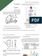 Unidad 2. La biotransformación de xenobióticos