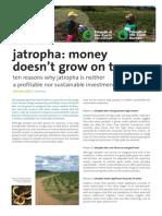 Jatropha FoEIsummary