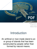 Palm Island Full Project.ppt