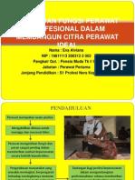 Peran Dan Fungsi Perawat Profesional Dalam Membangun Citra