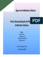 Revitalização_de_rios_em_ambientes__urbanos_apres