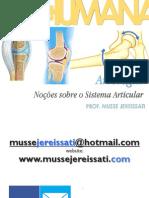 131 Fstp Artrologia Na