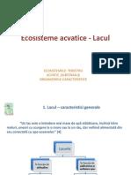 Ecosistem Acvatic Lacul