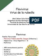 Flavivirus-Rubeóla2013OK[1]
