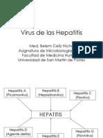 Hepatitis 2013