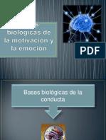 bases biológicas de la mot y emocion