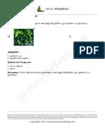 grannytherapy2014-03-15 11-47-39